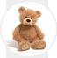 teddy-main