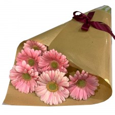 Gerberas - Pink