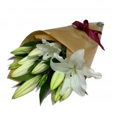Oriental Lilies - White