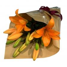 Tiger Lilies - Orange