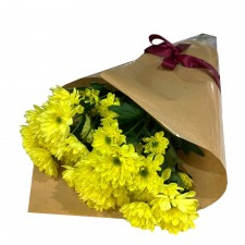 Chrysanthemum - Yellow