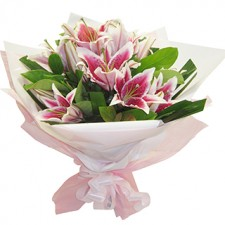 Serenity - Pink Oriental Lilies