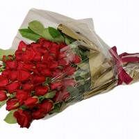 gallery red roses