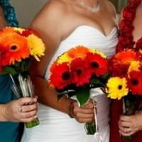 belinda head with bridesmaids cropped
